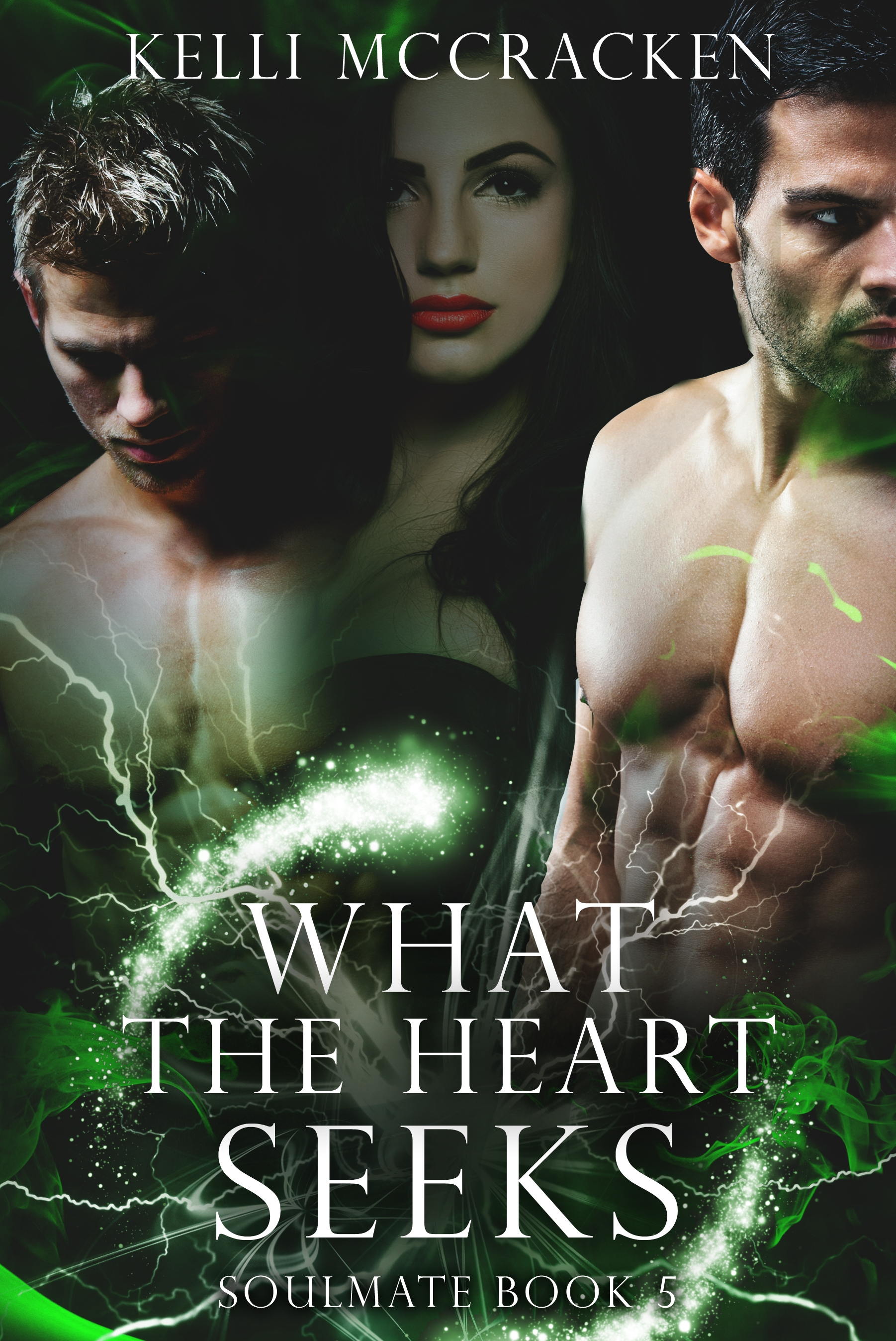 What the Heart Seeks (Soulmate 5)